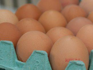 Uova e ovoderivati al Fipronil