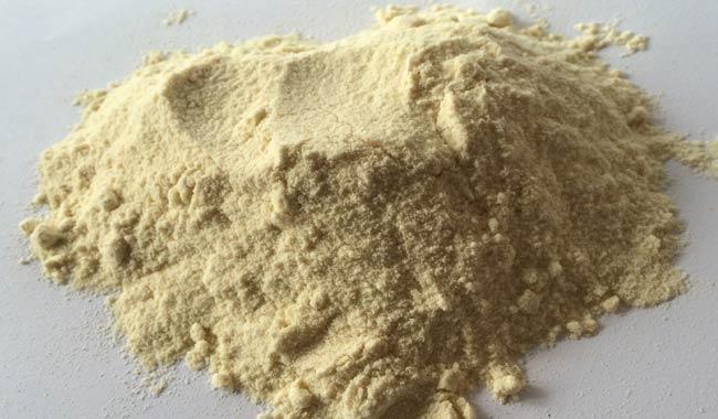 Farina di canapa light per celiaci ed intolleranti al glutine