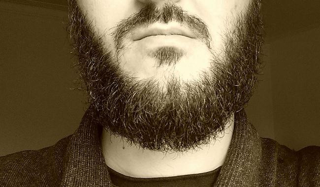 Batteri, molto più numerosi nella barba che nel pelo di cani e gatti