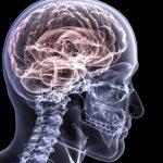 Alzheimer gli appuntamenti della giornata mondiale