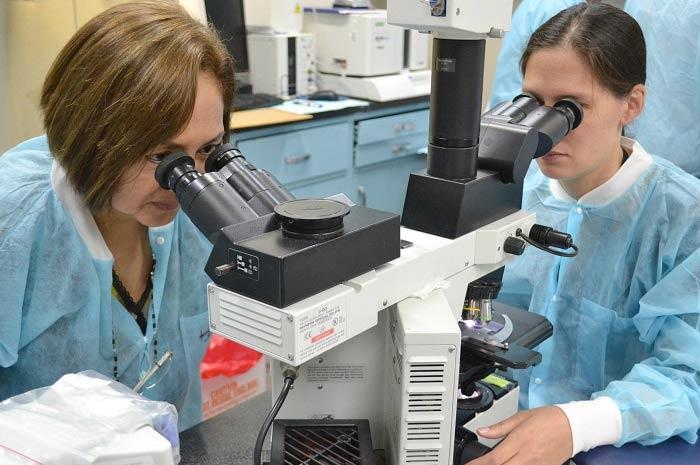 Cdc conferma 62 casi di mielite flaccida la nuova polio