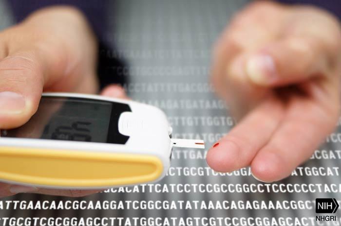 Diabete tipo 2 arriva un programma di supporto digitale