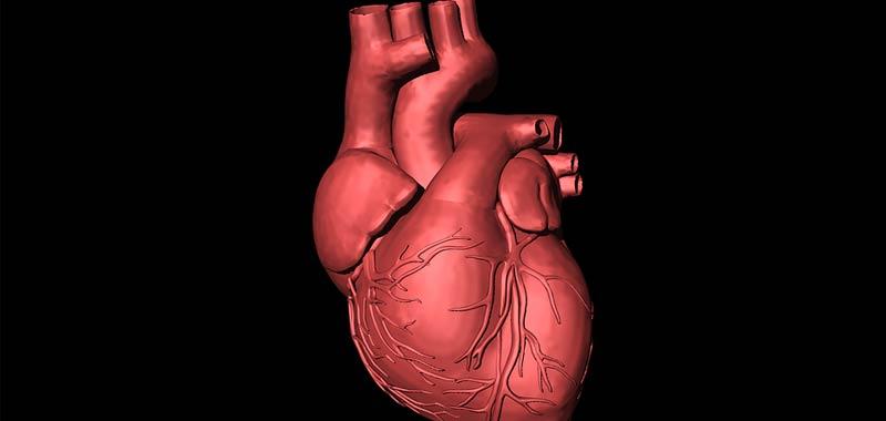 Arresto cardiaco le donne hanno meno possibilita di sopravvivere