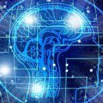 Elon Musk rivela Neuralink: connette direttamente il cervello al computer