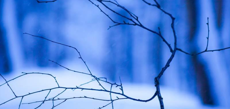 Freddo e neve pronti a tornare in Italia