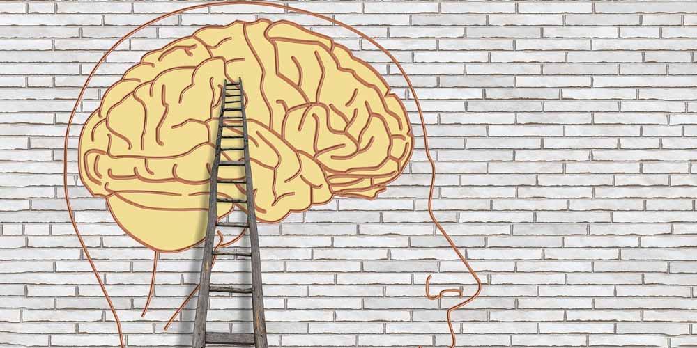 Come funzionano le nostre idee nel cervello