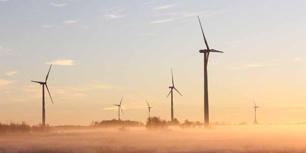 Sostenibilità in Italia: il 18% del fabbisogno energetico è green